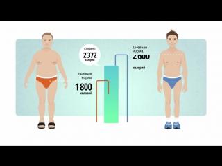 ЗОЖ. Как привести свое тело в порядок.