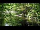 Beautiful Sunday- Daniel Boone- 1972