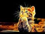 ☑ 3d Неудачи и удачи животных Очень смешно я плакал!! до слез стереопара .(4к)
