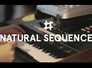 Natural Sequence In Waiting Fairlane Acoustic Live Session
