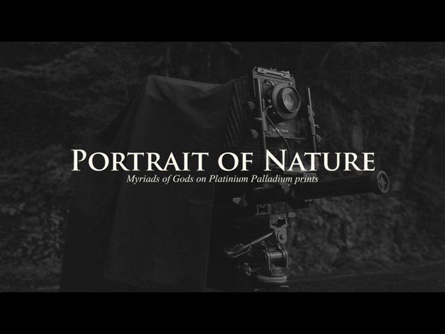 (English Sub) Portrait of Nature - Myriads of Gods on Platinum Palladium Prints -