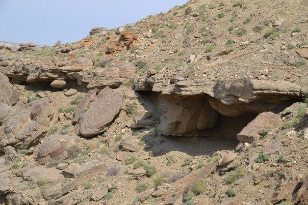 Естественные укрытия для муфлонов в устье оврага Когусем
