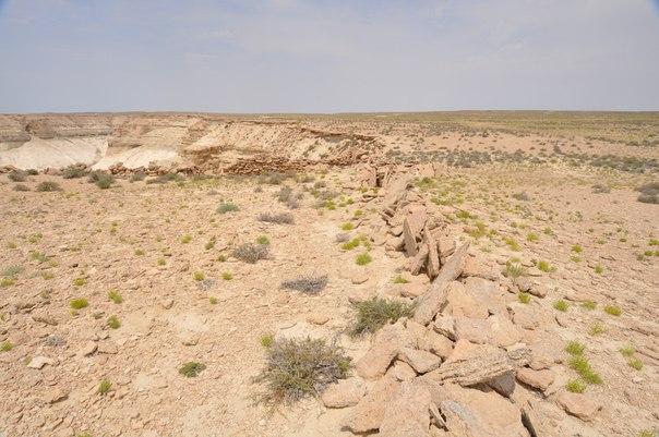 Ораны-каменные заграждения для загонной охоты на Западном Чинке Устюрта1