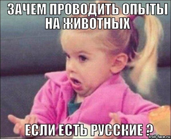 """Сообщество """"Рашка - квадратный ватник"""" заблокировано в российской соцсети - Цензор.НЕТ 2103"""