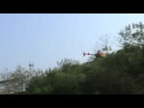 Honey Bee King 3 low altitude flight
