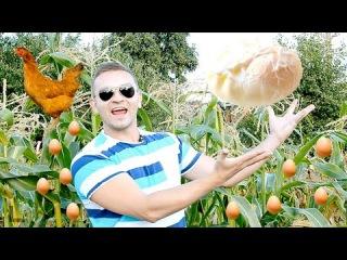 Блюдо дня - яйцо пашот(œuf poché)-интересный способ приготовления второй выпуск