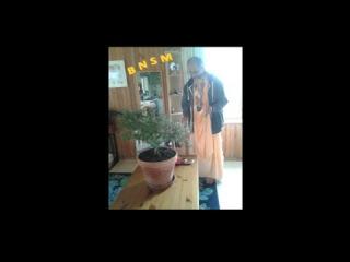 Srila Bhakti Nandan Swami Maharaj FRANCE 2014 full movie 1