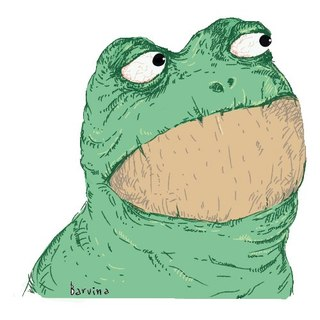 фото жабка азазина
