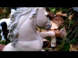 Дикие лошадки в лесу!