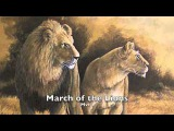 Saint-Saens Carnival of the Animals~Marche Royale du Lions (March of the Lions)