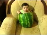 Ребёнок ест арбуз изнутри смешное видео