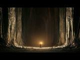 Celestial Voices (Niebia