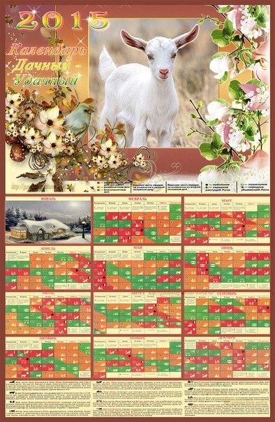 Лунный посадочный календарь - таблица на стену - «Дачный - Удачный», 2015 г