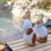 Удивительная Япония