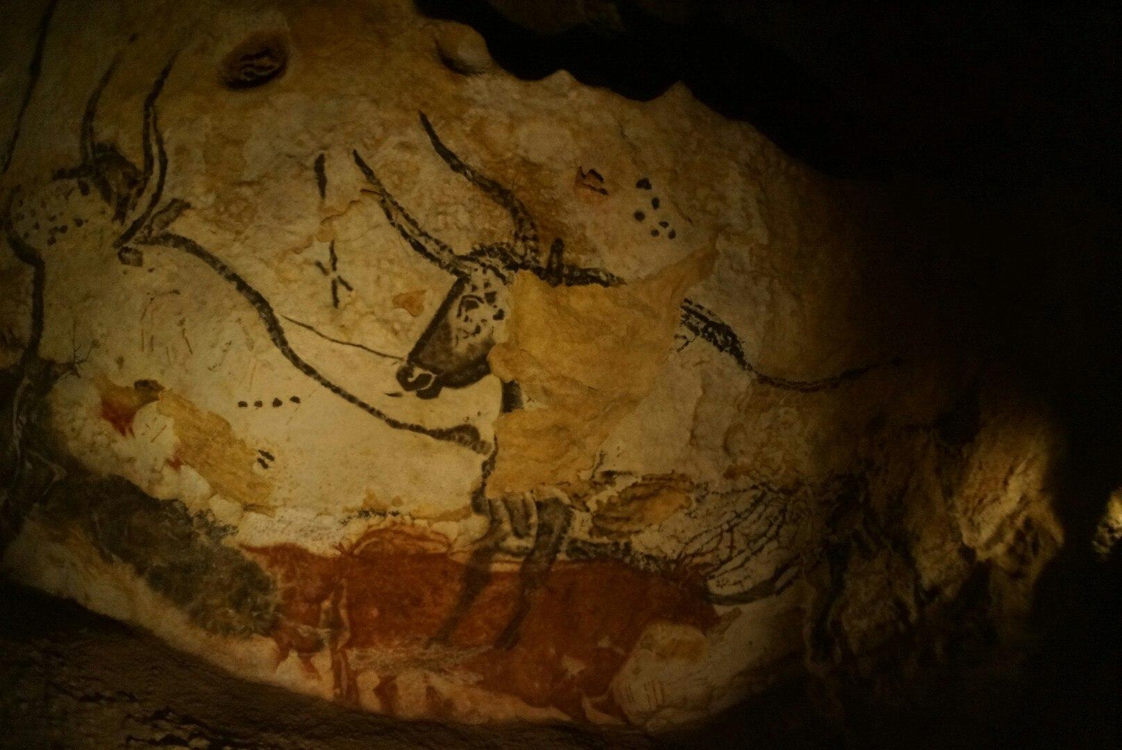 Изображение из пещеры Ласко (Grotte de Lascaux)