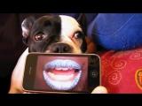 Cassius - I love you so par Bulma