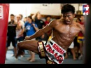 Muay Thai Inspiration 2