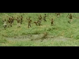 охота на бегемота