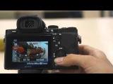 Настройка ISO в фотокамерах SONY Alpha. Модели SLT, DSLR, A7, A7R.