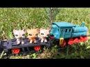 Петшопы. Узкоколеечной дороги мир иной. Завод Огонек. Детская железная дорога.