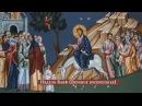 Программа № 27. Неделя Ваий Вербное Воскресение. 05 апреля 2015 года.