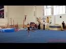Спортивная гимнастика (gymnastics) - произвольные упражнения