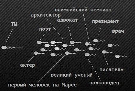 [club44848402|Принцип сперматозоида]---------------------------------