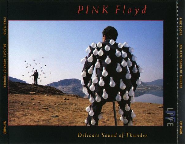 Pink Floyd - Delicate sound of thunder(1988 Live). #PinkFloyd #Delicatesoundofthunder