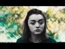 Maisie Sophie | 20% COOLER (HBD ELISA)