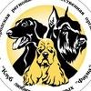 Новгородский клуб любителей животных ФАУНА