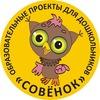 Образовательные проекты в детском саду