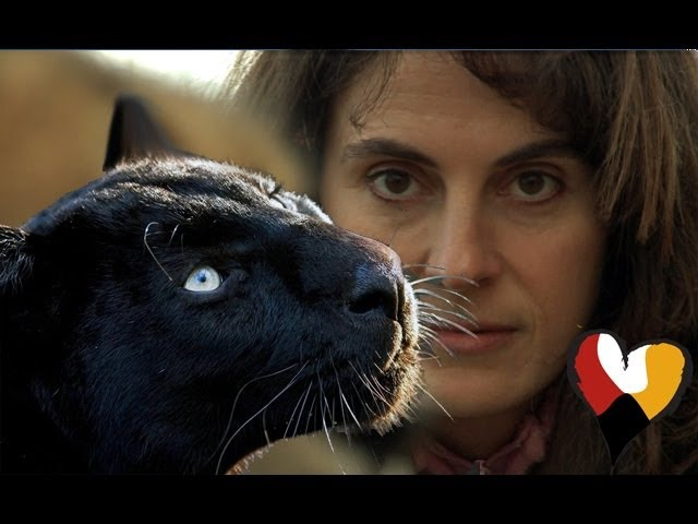 Black Leopard and The Animal Communicator Anna Breytenbach