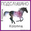 Подслушано в конном (Коломна)