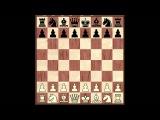 Основы шахматной игры. Часть 1 - Основы дебюта