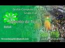 Império da Tijuca 2014 Desfile Completo