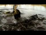 Уникальная съемка ловли щуки весной на воблер