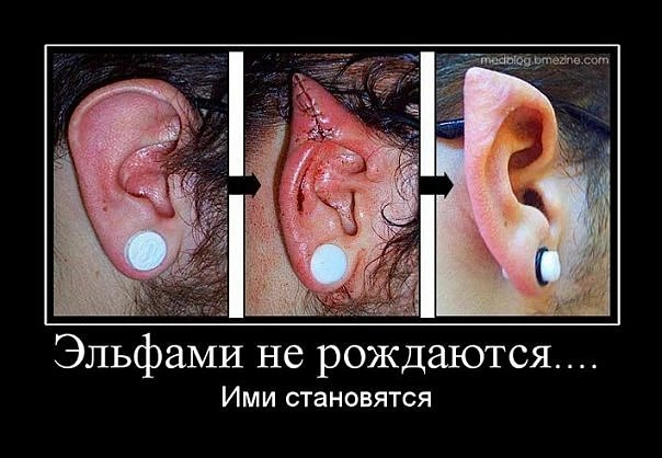 http://cs624529.vk.me/v624529568/2a15e/KeWzBVcte1U.jpg