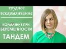 Выпуск 13. Кормление грудью ВО ВРЕМЯ БЕРЕМЕННОСТИ. Тандем