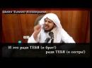 Шейх Хамис аз Захрани Ты стесняешься что ты мусульманин