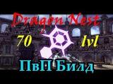 Dragon Nest ПвП Билд 70кап для Криоманта (PvP Build 70lvl Elestra)