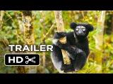 Island of Lemurs Madagascar Official Trailer #1 (2014) - Nature Documentary HD