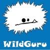 WildGuru – Активные туры по Грузии