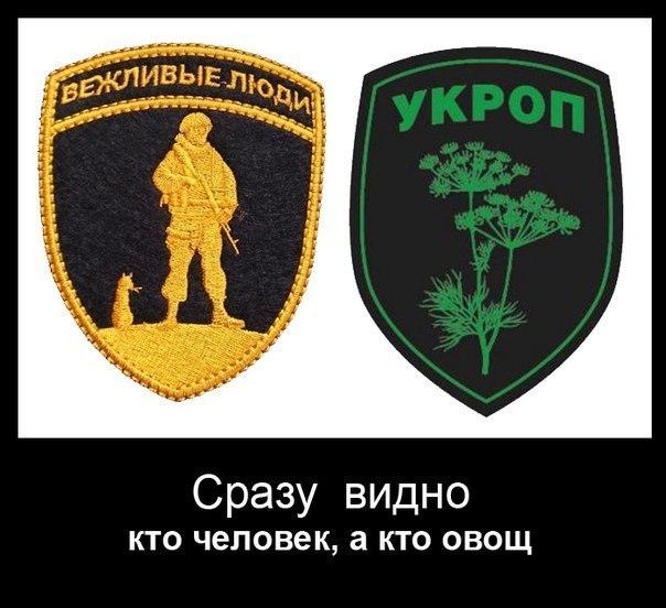 NKnfRvr5mBQ.jpg