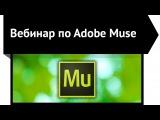 Как создать сайт в Adobe Muse СС - Видео урок для дизайнеров