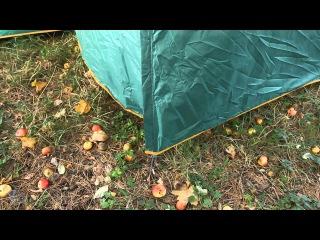 Обзор кемпинговой палатки Greenell «Виржиния 6 плюс»