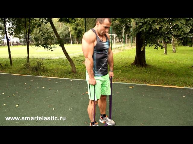 Упражнения с резиновыми петлями smartelastic для мышц плеч