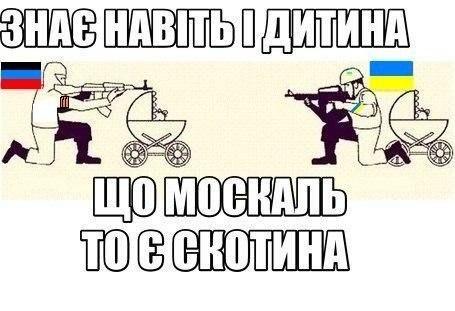 Украина должна продолжать курс Яценюка на полную энергонезависимость от России, а не закупать у нее газ, -  депутат Хмиль - Цензор.НЕТ 8369