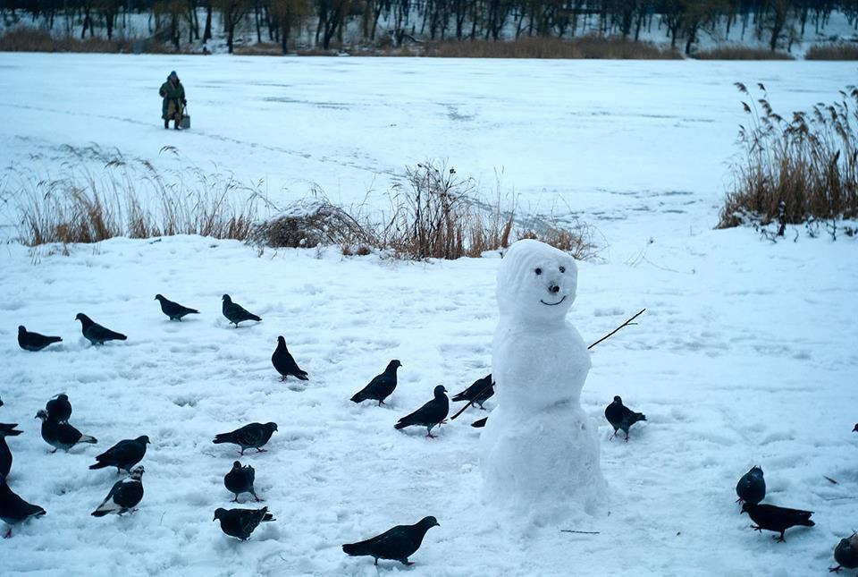 Снеговик и голуби