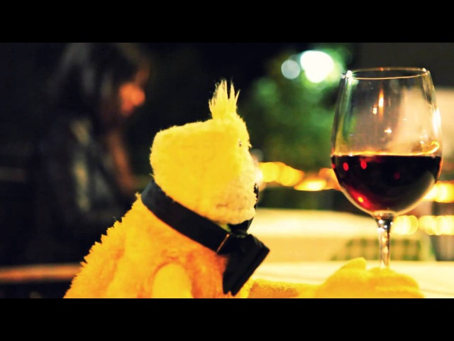 LRCC PRODUCTIONS - One Day in the Life of Flat Eric in Madeira