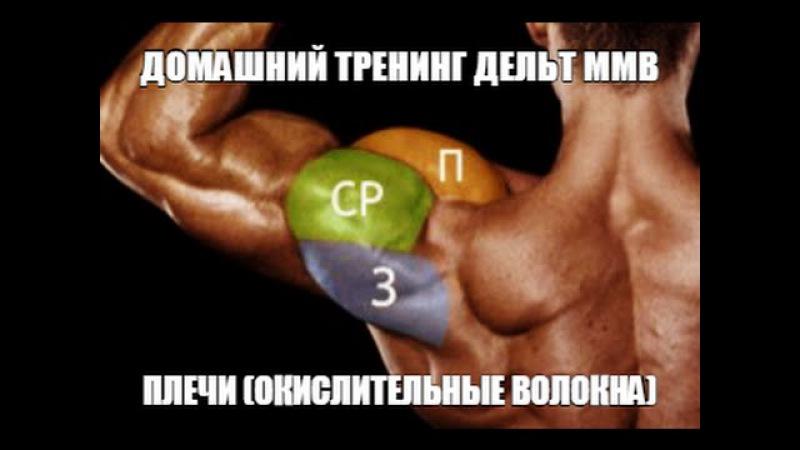 программа тренировки ммв кравцов в.в